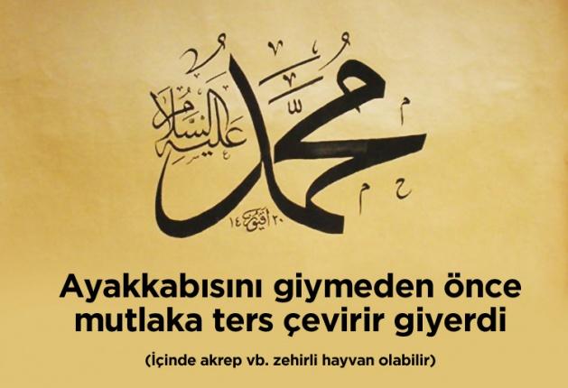 Peygamberimiz-Muhammed-Mustafa-Sunnetleri-hayati (1)